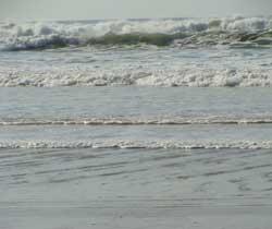 rencontre biscarrosse plage